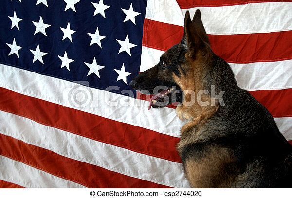 German Shepherd Head on Flag Backdrop - csp2744020