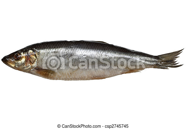 Salted herring - csp2745745