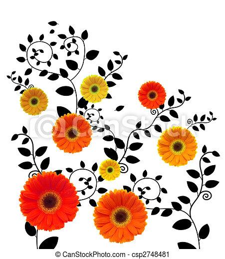 daisy - csp2748481