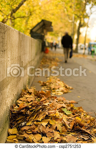 Autumn in Paris. Fallen leaves at the Seine embankment. Focus on leaf heap - csp2751253