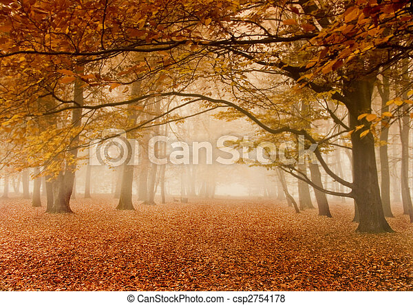 Foggy autumn - csp2754178