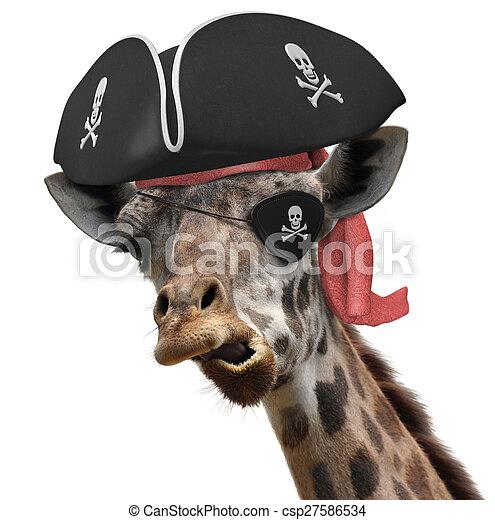 Funny pirate giraffe - csp27586534