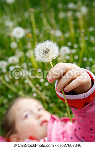 Girl lying in grass, surrounded by dandelion - csp27667346