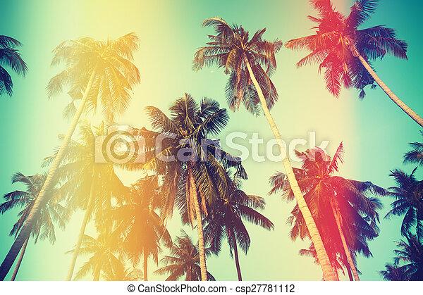 Palm trees over sky on beach