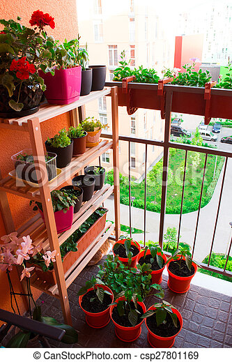 Small herb and flower garden