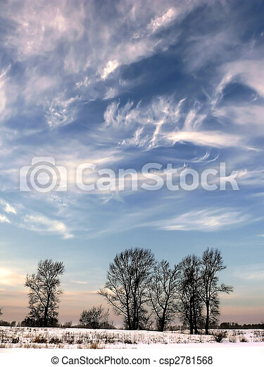 Contrasting black branches of trees against the backdrop of the sunset sky with beautiful clouds. vertical orientation. Winter landscape. - csp2781568