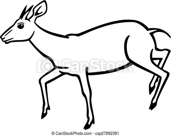 Antelope Line Drawing Duiker Antelope Vector