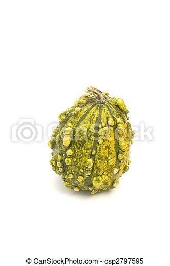 Ugly Autumn Squash - csp2797595