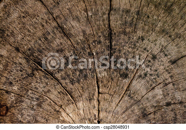 Wall Wood Backgrounds And Textures.
