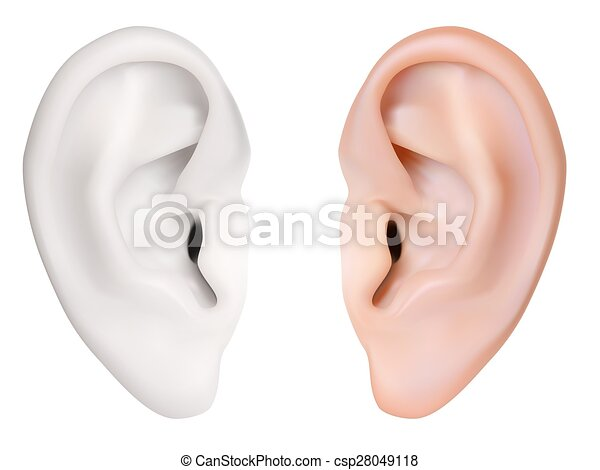 Vector Clip Art of Photo-realistic vector. Human Ear. Isolated on ...