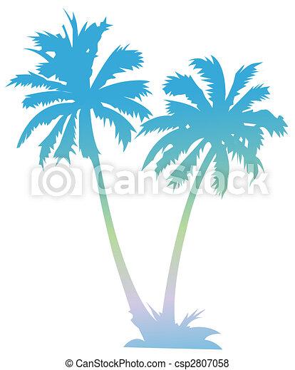 palm - csp2807058