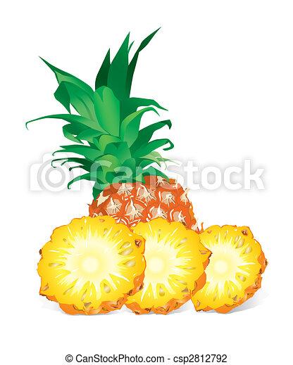 Pineapple (vector) - csp2812792
