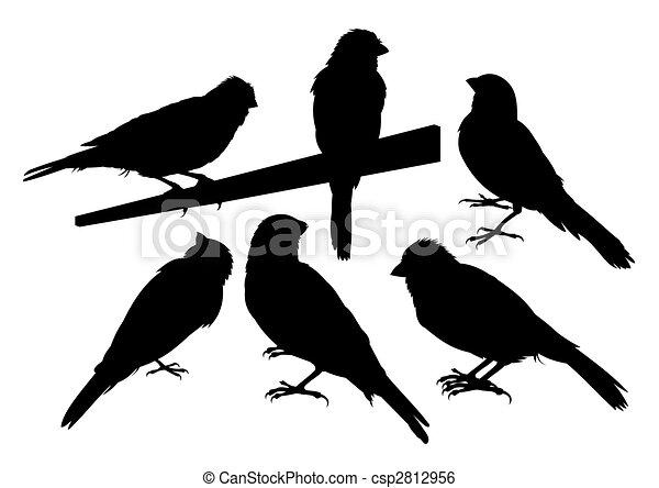 Canary bird silhouettes vector - csp2812956