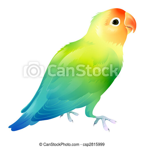 ... parrot in a white background csp2815999 - Search Vector Clipart