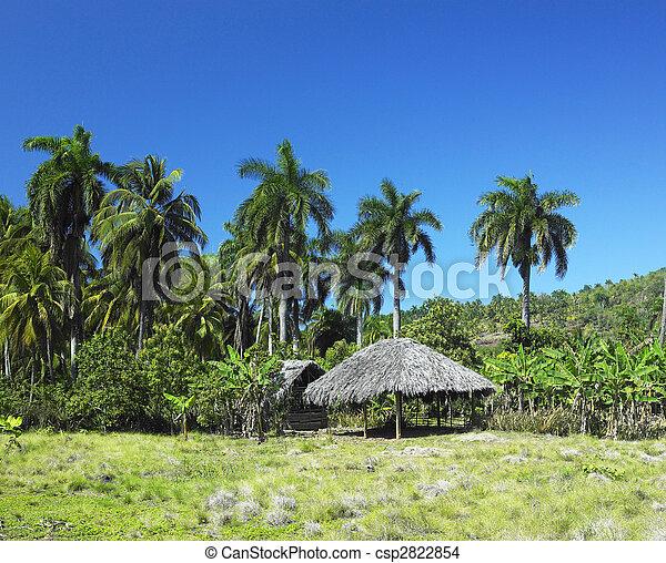 Parque Nacional Alejadro de Humboldt, Guantanamo Province, Cuba - csp2822854
