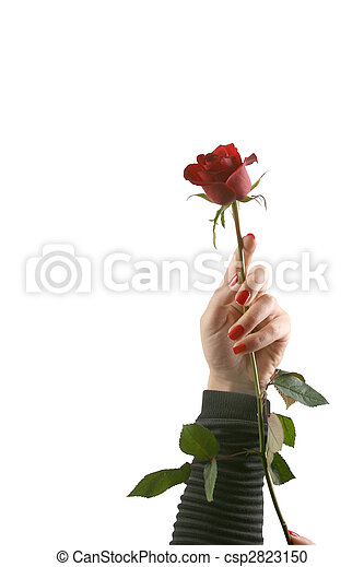 valentine\'s, jour - csp2823150