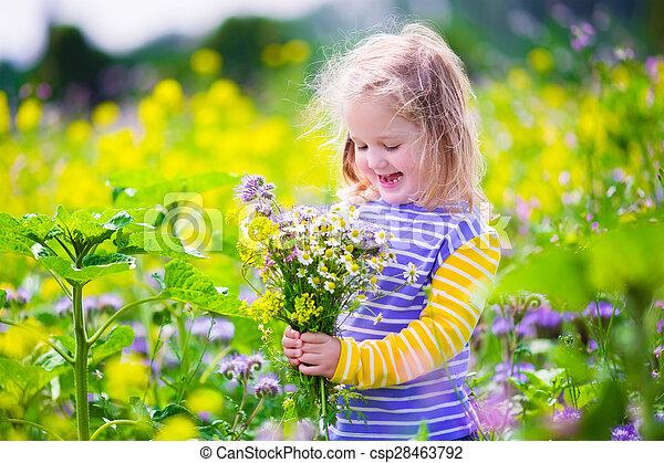 Little girl picking wild flowers in a field