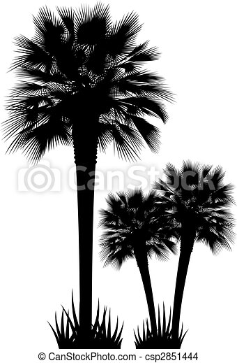 Palm Trees vector - csp2851444