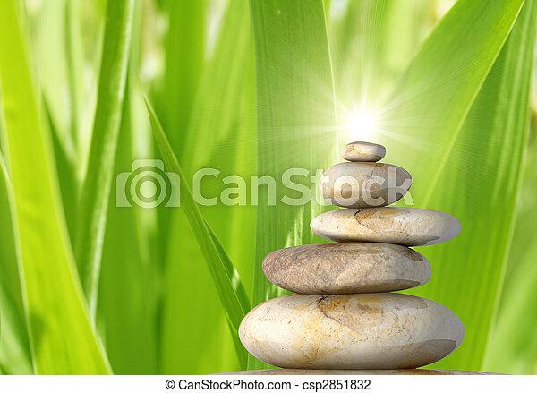 belleza, naturaleza - csp2851832