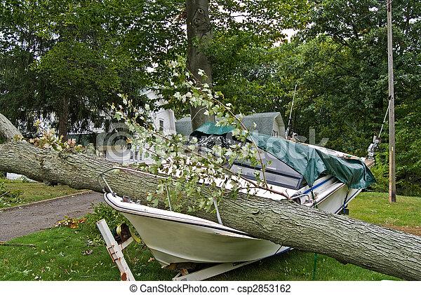 Insurance Claim - csp2853162