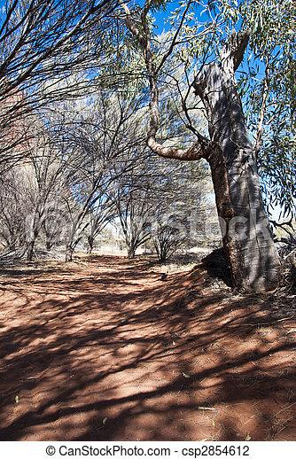 Australian Outback, Northern Territory, Australia - csp2854612