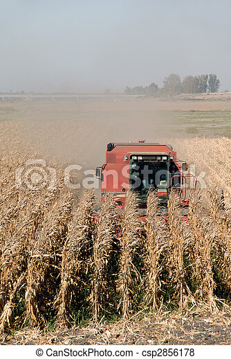 Combine and Corn - csp2856178