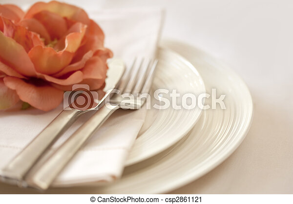Place Setting - csp2861121