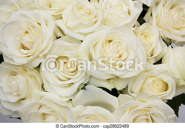 Bouquet white rose closeup