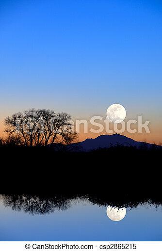 blå, kväll, reflexion, måne - csp2865215