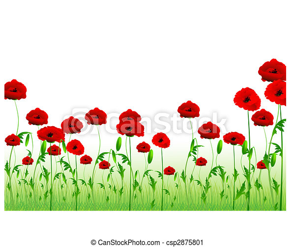 green poppy field with copy-space - csp2875801