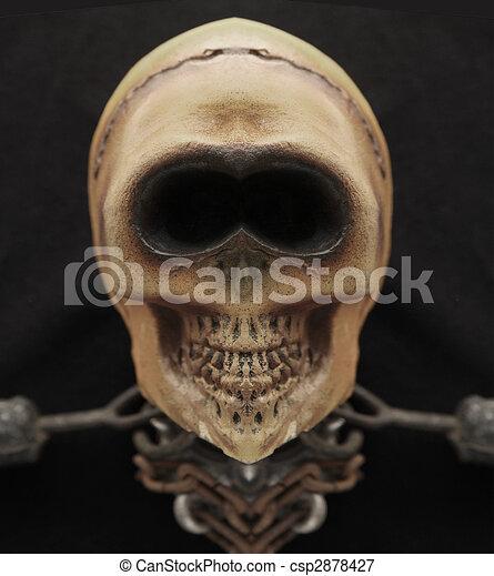 grinning skull - csp2878427