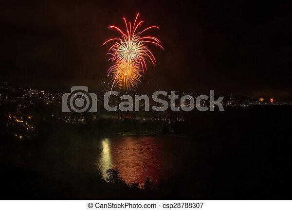 Laguna Beach fireworks / city lights on the fourth of July celebration
