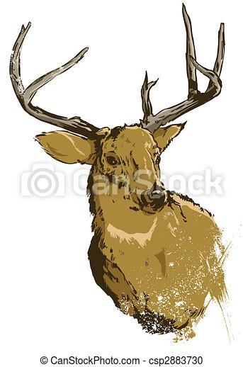 Wild deer vector illustration - csp2883730