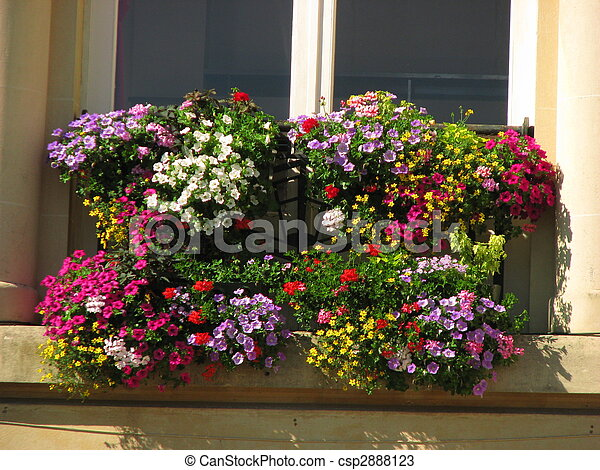 Window, flowers, colored - csp2888123