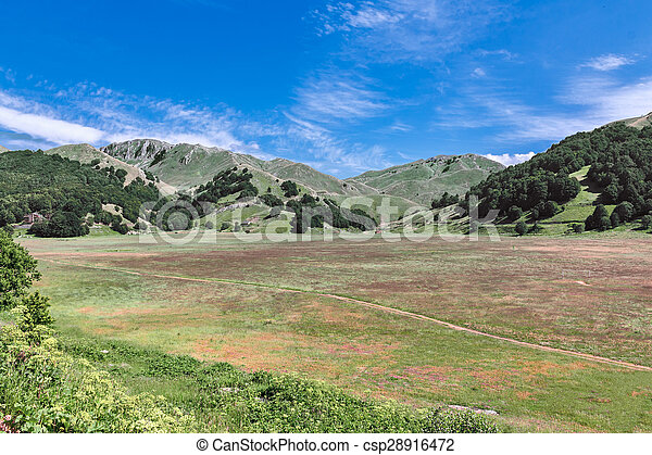 landscape of mountain  - csp28916472