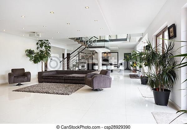 Spacious designer room