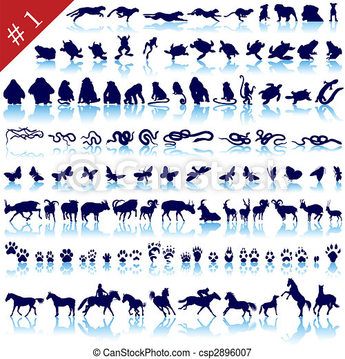 set of animal silhouettes - csp2896007