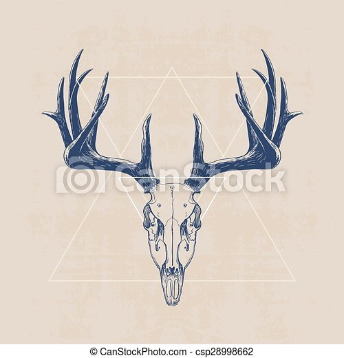 clip art vector of deer skull hand drawn illustration. Black Bedroom Furniture Sets. Home Design Ideas