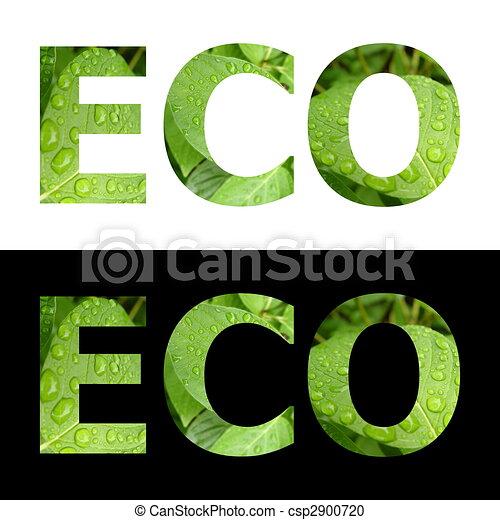 Textured Word Eco - csp2900720