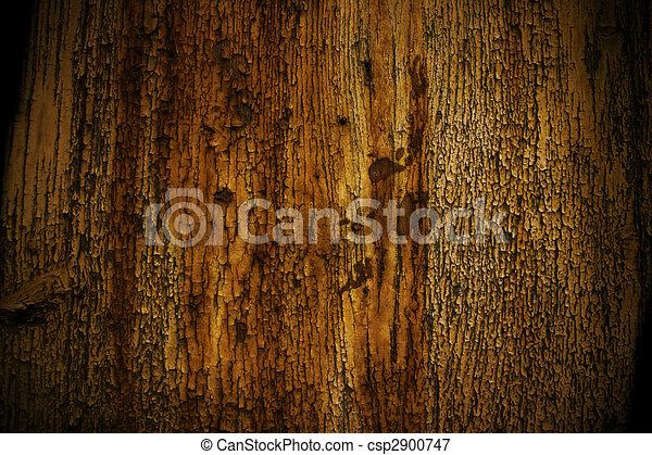rust  - csp2900747