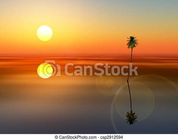 coconut tree sunset sea - csp2912594