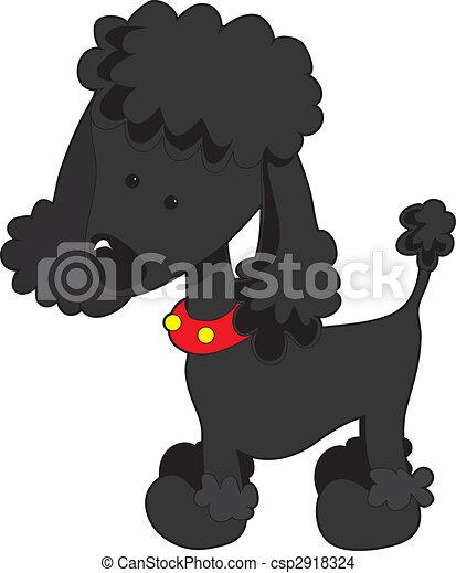 Poodle Black - csp2918324