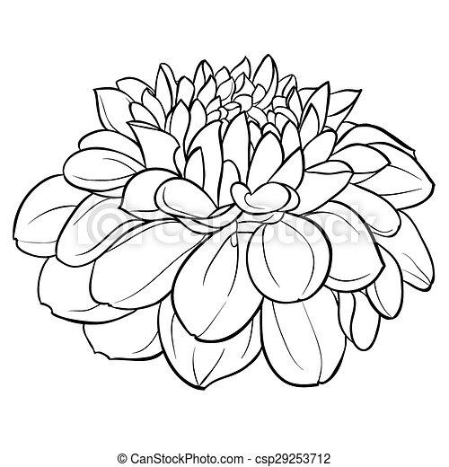 stregtegninger af blomster