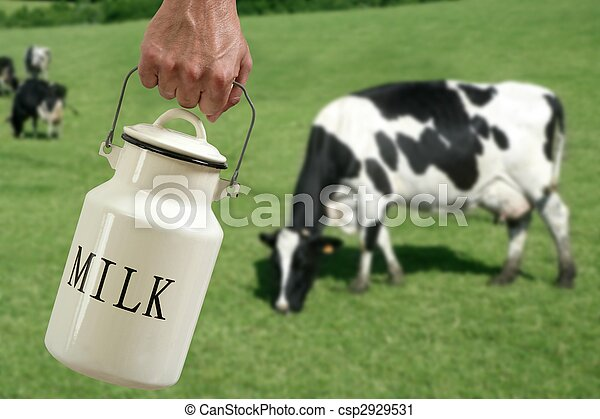 Milk pot farmer hand cow in meadow - csp2929531