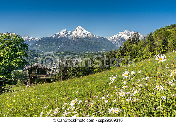 Bavarian Alps with beautiful flowers and Watzmann in springtime, Germany - csp29309316