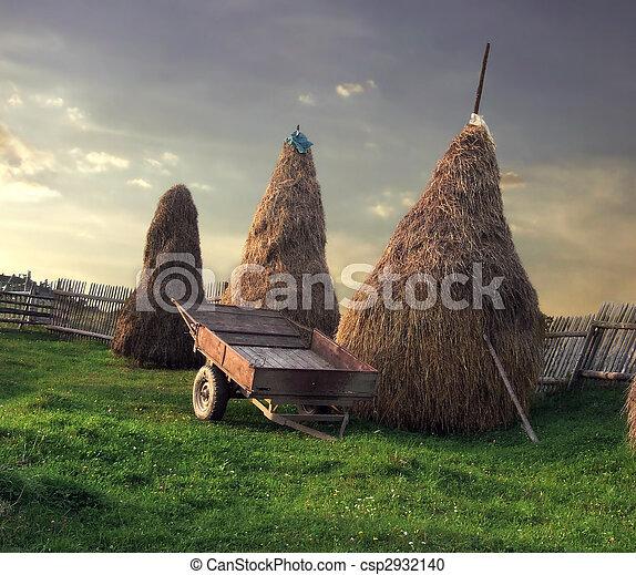 Rural scenery - csp2932140