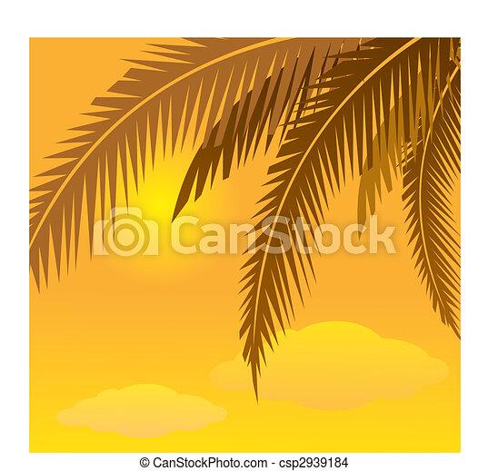 coconut tree - csp2939184