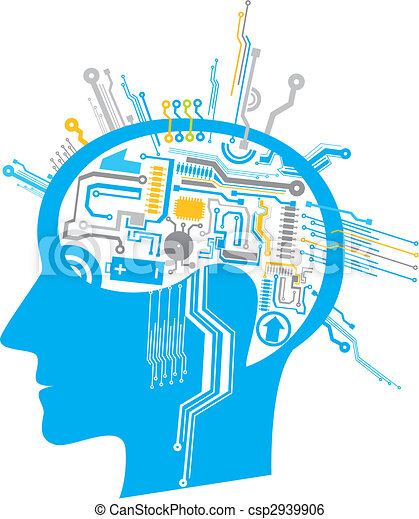 brain circuit - csp2939906