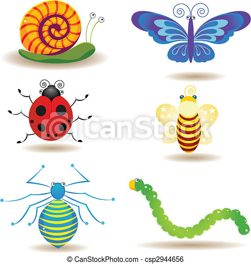 insects - csp2944656