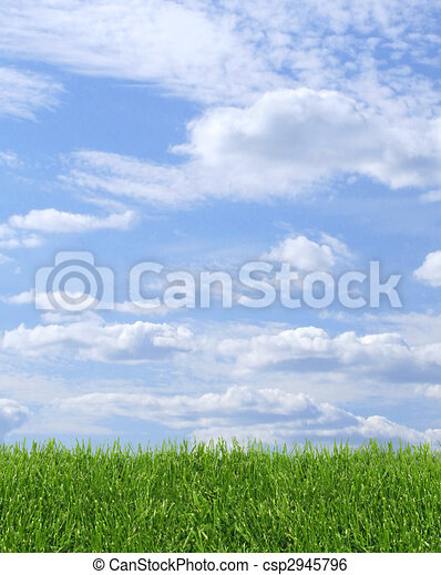 Green grass and blue sky - csp2945796
